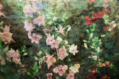 artwork with pale pink delphinium flowers and watercolor spatter Standard-Bild