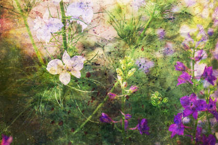 artwork with tender delphinium flowers and watercolor spatter Standard-Bild