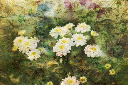 artwork with cute chamomile flowers