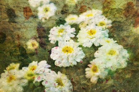artwork with beautiful chamomile flowers