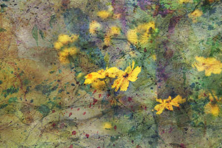 artwork with yellow garden flowers Standard-Bild