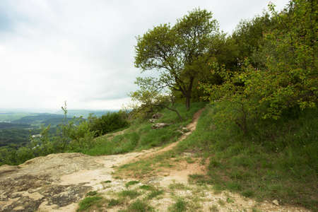 outdoor nature landscape