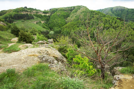 pleasant hilly landscape Standard-Bild