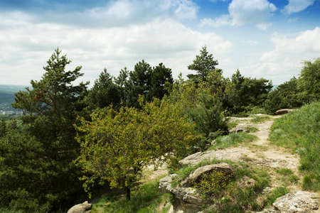 pleasant mountain landscape Standard-Bild