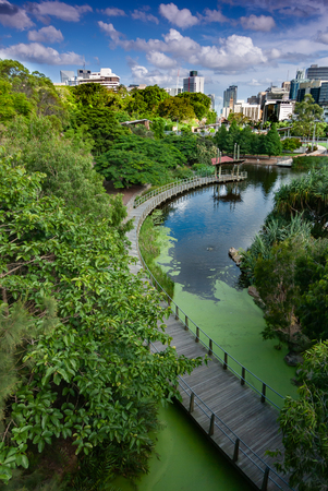 A wooden walkway through Brisbane Botanical Gardens with Brisbane city centre in the background Stock Photo