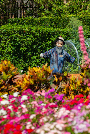 A friendly cheerful scarecrow in botanical gardens