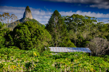 A view from a farm of Mount Coonowrin, one of the Glasshouse Mountains in Queensland, Australia Stock fotó