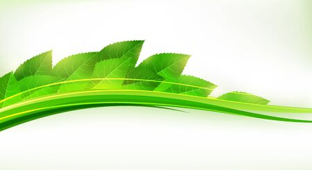 Fresh green leaves forming a wave. Cool eco banner. EPS10 vector Stock Vector - 15528081