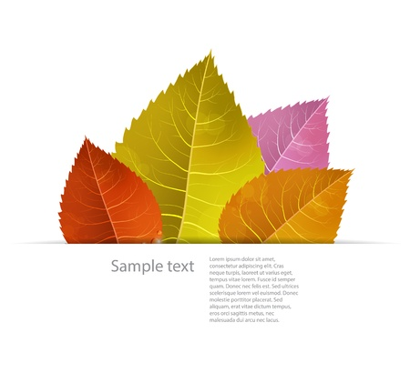 Autumn background with colored leaves in a paper fold Vector