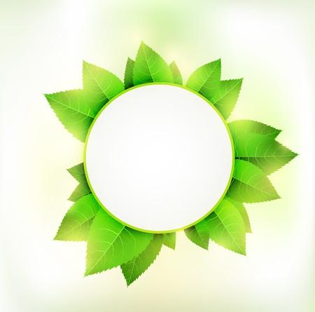 Green circle Vector