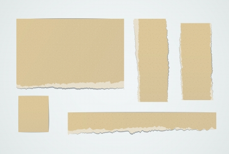 piece of paper: Set of realistic pieces ot torn brown paper design elements.