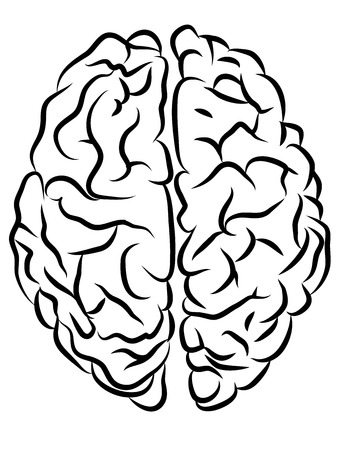 vector black and white brain contours, Cartoon style