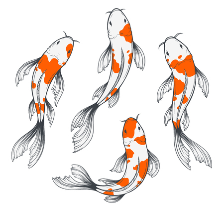 Koi Fish Set