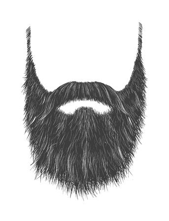 Long Gray Beard Foto de archivo