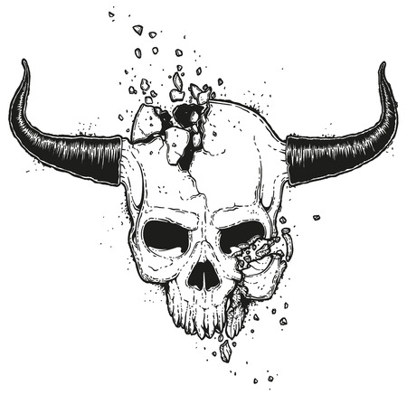 Broken Skull Illustration