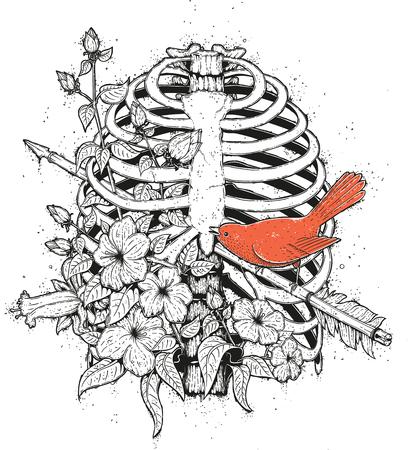 Red Bird Illustration  イラスト・ベクター素材