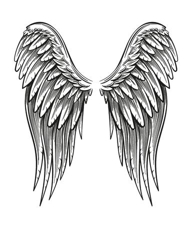 Ręcznie rysowane skrzydła na białym tle na prostym tle.