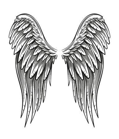Hand Drawn Wings isolated on plain background.