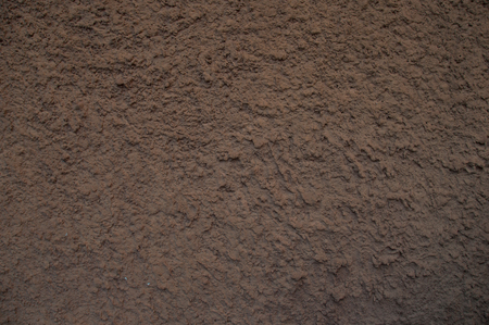 macro texture: Decorative wall of mud. Sharp focus. Evening light and calm colors