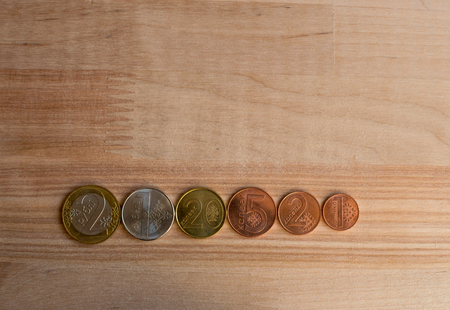 organized group: Organized group of coins.  New Belarus coins. Natural light. Sharp focus and front sides of coins