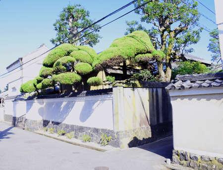 Japanese styled fence in Nara, Japan - Photo taken on November 4th, 2015