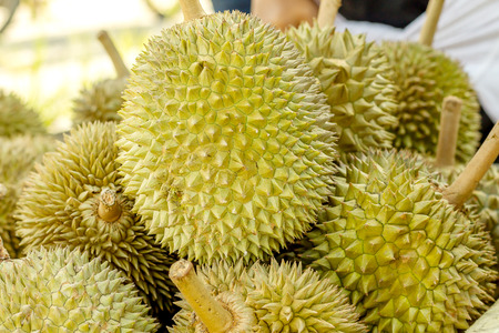 durian fruit in market Thailand Reklamní fotografie