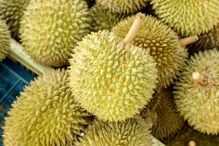 Durian fruit in market Thailand