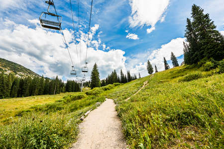 wasatch: Ski Lift in Alpine Meadows in Albion Basin of Wasatch National Forest, Utah