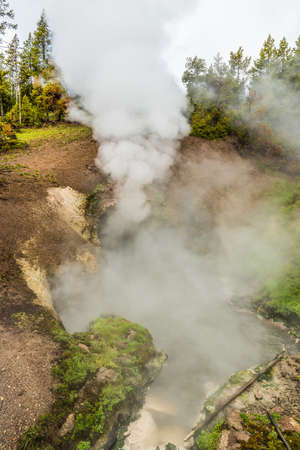 steam mouth: Dragons mouth spring in Yellowstone National Park with steam rising from cave in Mud Volcano area Stock Photo