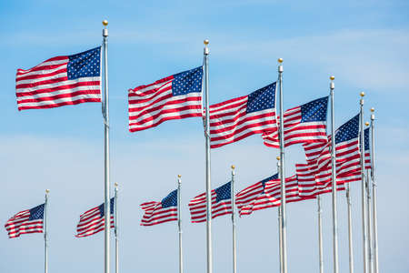 banderas america: Curved row of many American Flags in Washington D.C. by monument isolated against blue sky