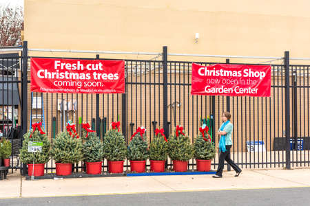 walmart: Burke, USA - November 25, 2016: Walmart store facade with holiday Christmas trees on display at garden center and woman walking Editorial