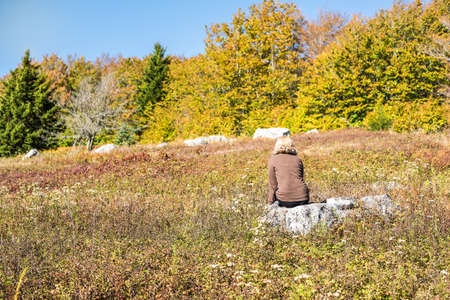 allegheny: Young woman sitting on rock in meadow in dolly sods