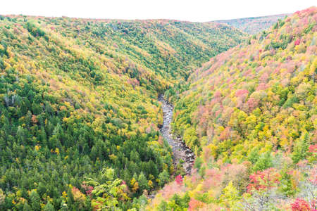 allegheny: Blackwater river with Allegheny mountains in autumn