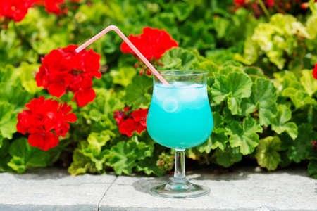 celebration: Blue cocktail outdoors with a red flowers on background