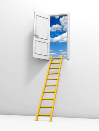 3d ladder and a door  Isolated on white background photo