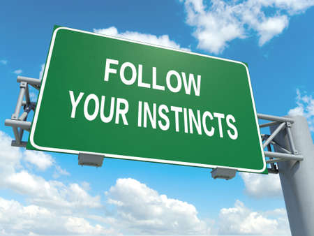 instincts: A road sign with follow you instincts words on sky background