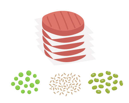 Plant based burger patties with their ingredients, mung beans, brown rice and pea. Vegan meat concept. Vector flat illustration.