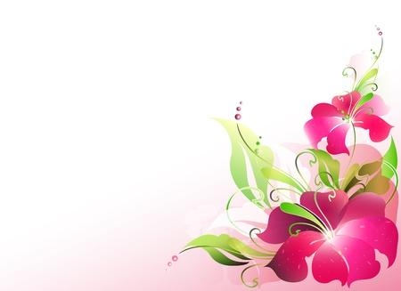 꽃 카드 벡터 일러스트