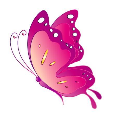 나비, 나비, 벡터