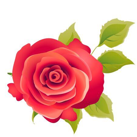 flowers card vector Vektoros illusztráció