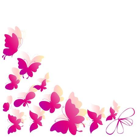 lazo rosa: mariposa, mariposas, vector