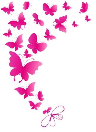 pink bow: butterfly, butterflies, vector