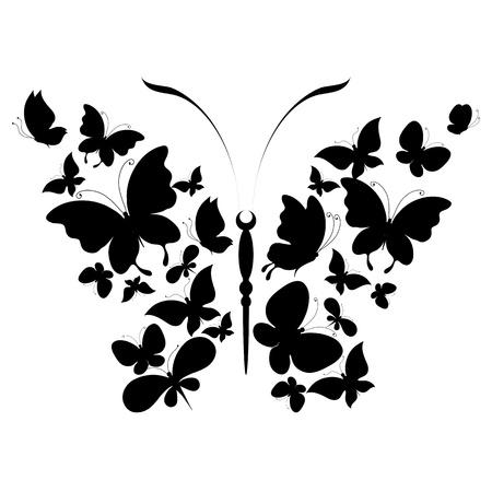 butterflies