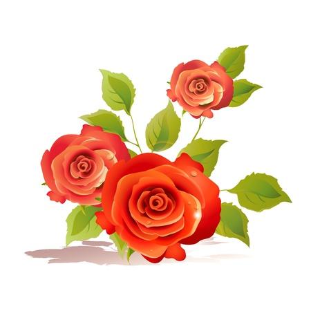 ed: flowers card vector