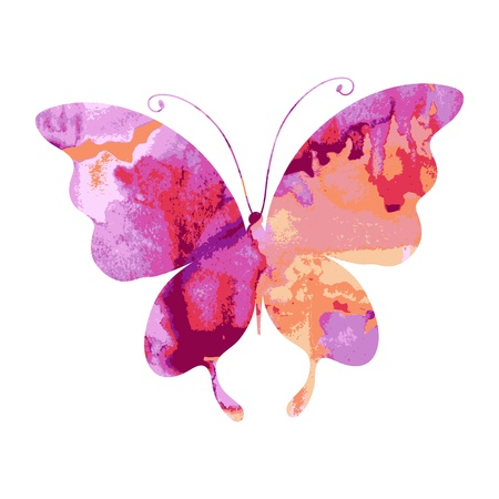 mariposa, mariposas, vector
