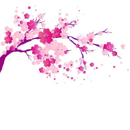 fleur de cerisier: arbre de fleurs Illustration