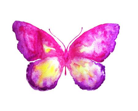vlinder, aquarel