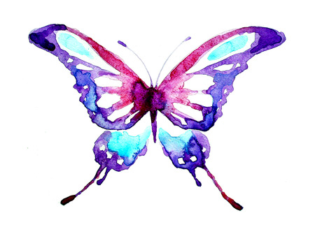 butterfly, watercolor