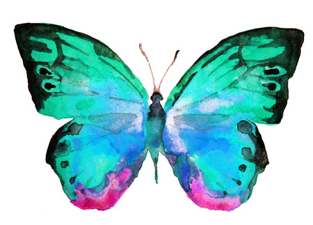 watercolor blue: butterfly, watercolor