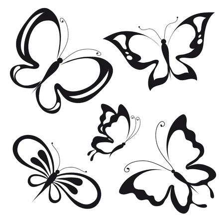 butterfly bow: butterflies design Illustration